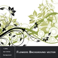 Flowers and Swirls Background vector