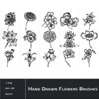 Hand Drawn Flowers Brushes
