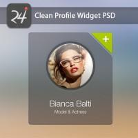 User Profile Widget PSD Template