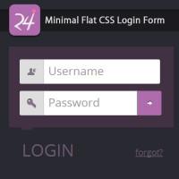 Minimal Flat CSS Login Form